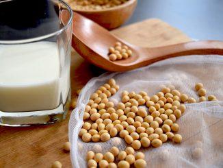 produsele din soia