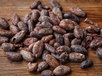 beneficii cacao